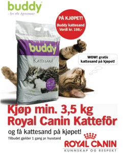Buddy kattesand